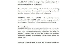 Company Business Plan Template Construction Business Plan Template 12 Free Word Excel