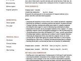 Computer Operator Resume format Word Computer Operator Resume It Job Description Example