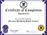 Concealed Carry Certificate Template Concealed Carry