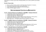 Concert Sponsorship Proposal Template Sponsorship Proposal Of Concerts In the Village Free Download