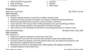 Condensed Resume Template Condensed Resume Template Templates