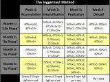 Conjugate Method Template Westside Barbell Template Madinbelgrade