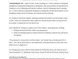 Consultancy Proposal Template Doc Unique Business Proposal Template Doc Aguakatedigital