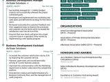 Contoh Resume Yang Profesional 22 Contoh Cv Curriculum Vitae Resume Dan Daftar