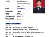 Contoh Resume Yang Profesional Contoh Cv Curriculum Vitae atau Daftar Riwayat Hidup