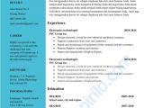Contoh Resume Yang Profesional Fresh Graduate Contoh Curriculum Vitae Yang Menarik