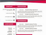 Contoh Resume Yang Profesional Membuat Curriculum Vitae Menarik