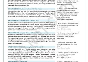 Coo Resume Templates Coo Resume Sample Best Professional Resumes Letters