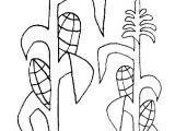 Corn Stalk Template Corn Stalk Coloring Sheet Coloring Page