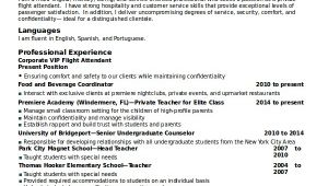 Corporate Flight attendant Resume Template 5 Flight attendant Resume Templates Free Word Pdf