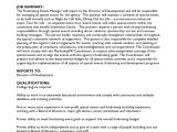 Cover Letter for Charity Job Cover Letter for Fundraising Job Granitestateartsmarket Com