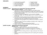 Cover Letter organizational Skills Best organizational Development Resume Example Livecareer