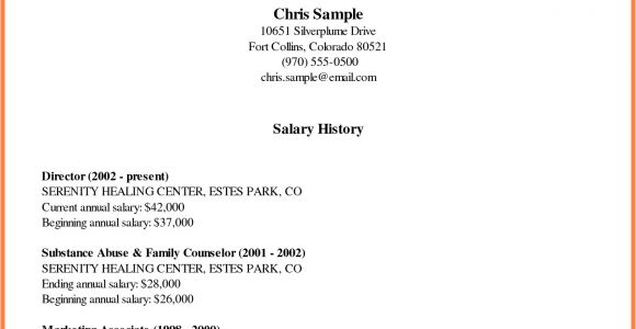 Cover Letter with Salary History and Requirements 5 Cover Letter with Salary History Example Salary Slip