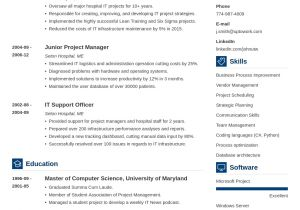 Create Professional Resume Best Cv Maker Online Create A Perfect Cv now In 5 Mins