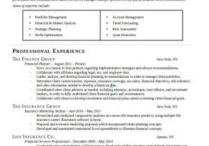 Create Professional Resume Create or Edit A Professional Resume by Maenoko