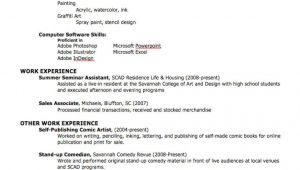 Create Professional Resume How to Create A Professional Resume
