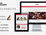 Create Responsive Email Template Online Mobillium Responsive Email Newsletter by Bedros