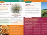 Creative Email Newsletter Templates A Roundup Of Creative Premium Newsletter Templates