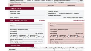 Credit Union Business Plan Template 44 Basic Application forms Free Premium Templates