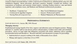 Criminal Defense attorney Resume Sample Insurance Defense attorney Resume Samplebusinessresume