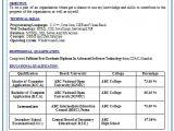Cs Fresher Resume format Professional Curriculum Vitae Resume Template Sample
