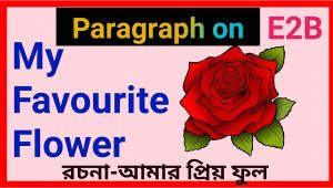 Cue Card About Favourite Flower Red Rose Flower Cue Card
