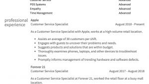 Customer Service Resume Sample Customer Service Resume Samples How to Guide Resume Com