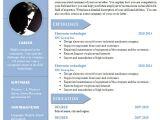 Cv Resume format Word Curriculum Vitae Resume Word Template 904 910 Free Cv