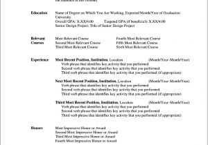 Cv Resume Template Microsoft Word Curriculum Vitae Templates for Microsoft Word Free