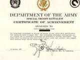 Da form 2442 Certificate Of Achievement Template Da form 2442 Certificate Of Achievement Template