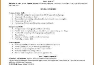 Describe Your Computer Skills Resume Sample Abilities for Resume Examples Www Sanitizeuv Com