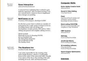 Describe Your Computer Skills Resume Sample Describe Your Computer Skills Resume Sample 6 Describe