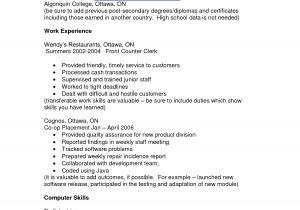 Describe Your Computer Skills Resume Sample List Of Computer Skills On Resume Best Resume Templates
