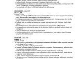 Desktop Support Engineer Resume Doc Desktop Analyst Resume Samples Velvet Jobs