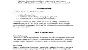Detailed Proposal Template Informal Proposal Letter Example Writing A Project
