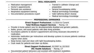 Direct Support Professional Resume Template Best Direct Support Professional Resume Example Livecareer