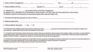 Disc Jockey Contract Template Printable Blank Contract form for Disc Jockey with 12