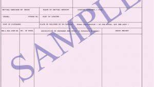 Dock Receipt Template Dock Receipt Ocean Freight Document
