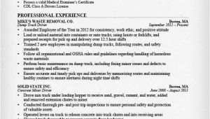 Driver Basic Resume Truck Driver Resume Sample and Tips Resume Genius
