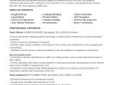 Drivers Cv Template Driver Resume Template 8 Free Word Pdf Document