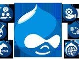 Drupal Template Development Comparison Of Most Popular Cms Msa Technosoft