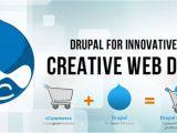Drupal Template Development Durpal Cms Development Services Website Design and