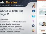 Dynamic Email Template Dynamic Emailer Premium Email Template WordPress theme