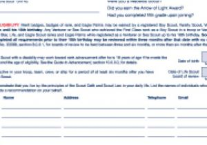Eagle Scout Proposal Template Eagle Scout Proposal Template One Piece