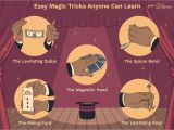 Easy Card Magic Tricks to Learn Learn Fun Magic Tricks to Try On Your Friends