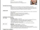 Ejemplo De Resumen Profesional Modelo Curriculum Vitae Auxiliar En Ventas De Plomo