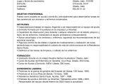 Ejemplos Objetivos Resume Profesional Curriculum Vitae Objetivo Profesional Ejemplos