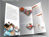 Elementary School Brochure Template 20 School Brochures Template