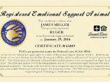 Emotional Support Dog Certificate Template 30 Best Surviving Sam Images On Pinterest Service