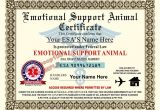 Emotional Support Dog Certificate Template Emotional Support Animal Esa Certificate 8 5 by 11